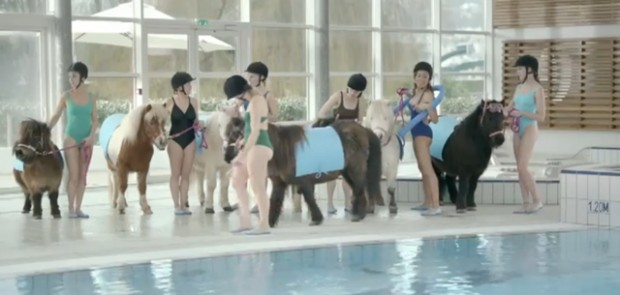 toyota, aqua poney, auris, yaris, rav 4, Prius +, verso, moments plus, pub