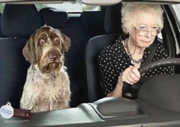 Personnes âgées, permis de conduire, voiture, sécurité routière, sécurité, danger, accident