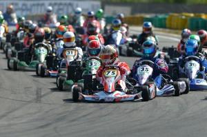 les enjoliveuses, FFSA, fédération française du sport automobile, saison 2014, karting
