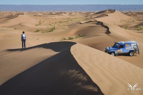 Femme Gazelle Maroc