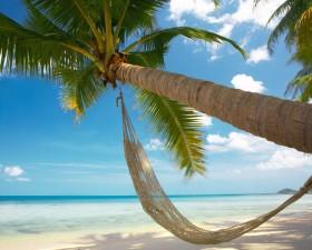 departs en vacances, vacances, vacances d ete, grande vacances, trafic, circulation, bison futé, embouteillage