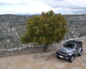 jeep, wrangler, jeep wrangler, essai, testdrive, 4x4, SUV