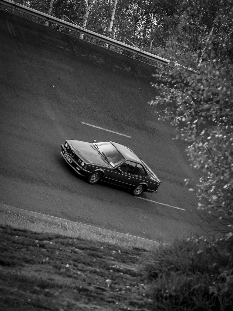 voiture ancienne, voitures anciennes, voiture de collection, acheter voiture de collection, austin healey