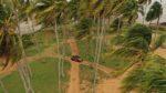 peugeot, 2008, peugeot 2008, guyane, roadtrip, comparatif